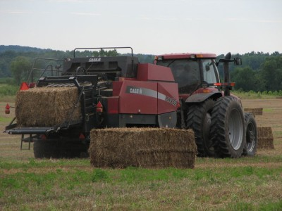 The large bales